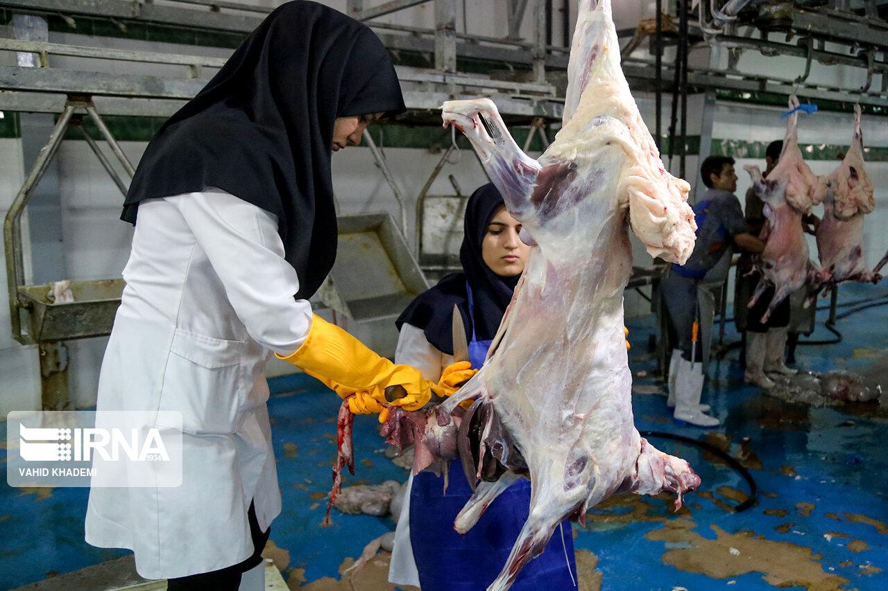خانم های قصاب در ایران