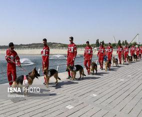 تصاویر مانور سگهای جستجو و نجات هلالاحمر