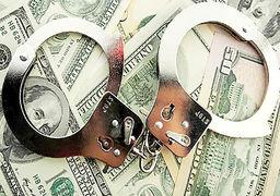 ارتقای رسمی پلیس مالی زیر ذرهبین