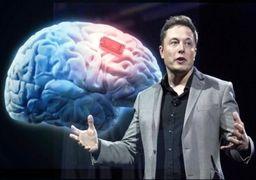 استفاده از مغز انسان بعنوان کارت حافظه!