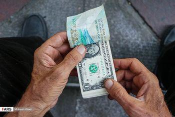 سهم «ارز» در گفتگوی دیشب رئیس جمهوری