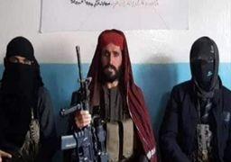 یکی از فرماندهان کلیدی طالبان پاکستان کشته شد