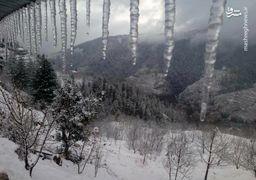 تصاویر برف و یخبندان در هند