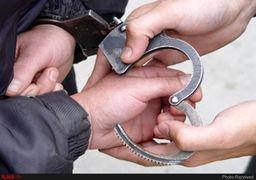 دستگیری باند سرقت خیابان نیاوران