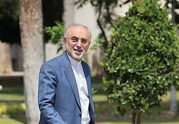 چالش ایران و آژانس با تدبیر بزرگان نظام حل شد