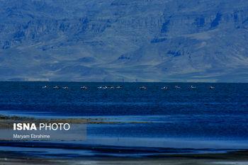 وسعت دریاچه ارومیه کاهش پیدا کرده است