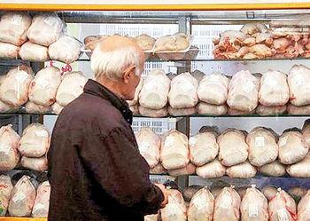 قیمت مرغ امروز در بازار