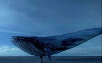کشف یک نهنگ ۱۰ تنی در جنگل های آمازون موجب حیرت شد! +تصاویر
