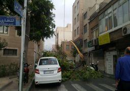 آخرین آمار طوفان امروز تهران: 76 مصدوم، یک کشته