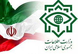 اطلاعیه وزارت اطلاعات در واکنش به جوسازی طرفداران حسن عباسی