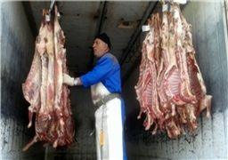 لزوم راه اندازی سامانه آماری گوشت قرمز