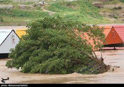 پیش بینی بارش های سیل آسا برای ایران در دهه های آینده /مقایسه بارش ۶۰ سال گذشته ایران