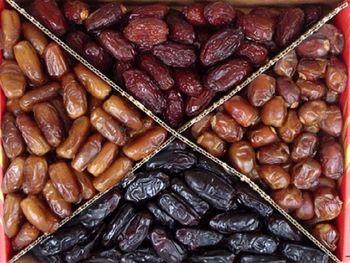 عرضه مستقیم خرما در ۱۶ جایگاه موقت برای ماه رمضان