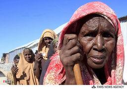 جهان در انتظار دور جدید بحران غدایی
