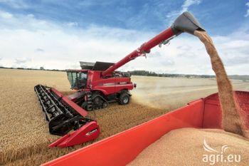 قیمت گندم و سویا بازهم کاهش مییابد
