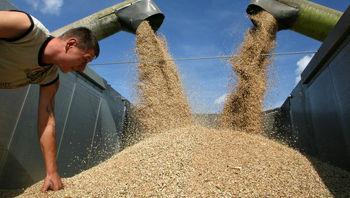 چشم انداز تولید غلات روسیه تار شد