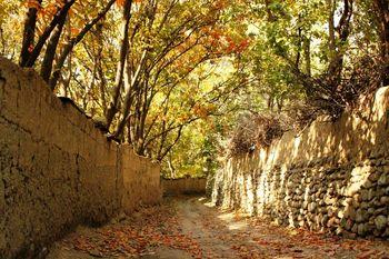 باغات پایتخت شناسنامه دار می شود،درختان تهران پلاک