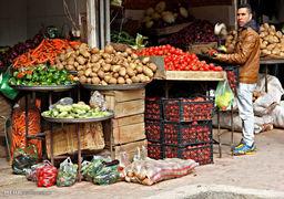 مرکز آمار اعلام کرد؛ گوجه فرنگی صدرنشین کاهش قیمتهای دیماه