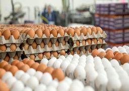 تخم مرغ گران شد !