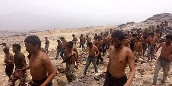 عربستان نیروهای منصور هادی را به باتلاق مرگ در مرز یمن فرستاد
