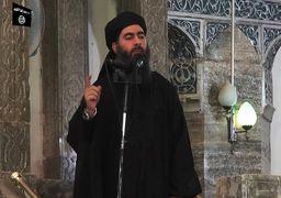برنامه ابوبکرالبغدادی برای بازگشت به عراق