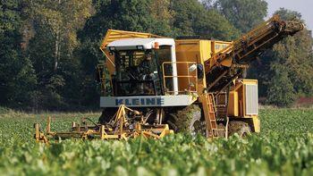 کاهش صادرات شکر اتحادیه اروپا