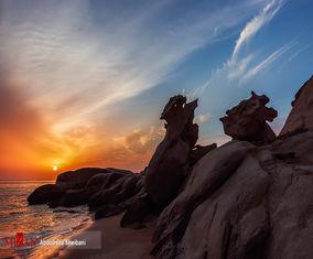 تصاویری از کلوتهای ساحلی خلیج فارس