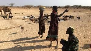 سوتغذیه 11 میلیون نفر در شاخ آفریقا