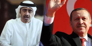 امارت علیه ترکیه به شورای امنیت نامه نوشت