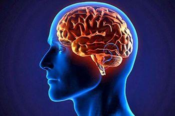 علائم خشکی مغز را بشناسید