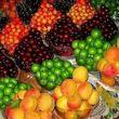 گرانترین و ارزانترین میوههای تابستانی+جدول قیمت میوه امروز