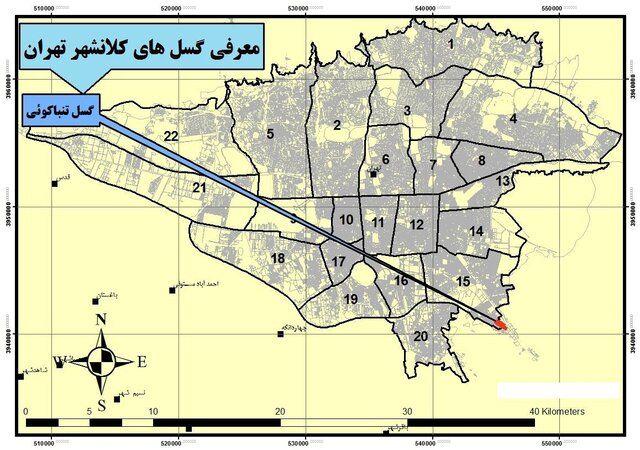 گسل تهران