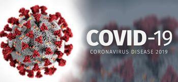 """سازمان جهانی بهداشت شیوع کروناویروس را """"همهگیری جهانی"""" اعلام کرد"""