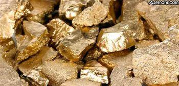 رکورد تولید طلا امسال شکسته میشود
