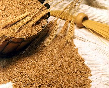 واردات جو و گندم بدون نیاز به مجوز وزارت جهاد کشاورزی