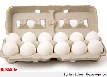 زیان 1500 تومانی تولیدکنندگان تخم مرغ