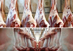 چرا قیمت گوشت نجومی شد؟ / برسی پرونده گرانی گوشت طی ۱۰ سال گذشته