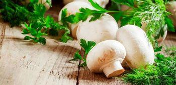 قیمت قارچ در میادین چند است؟
