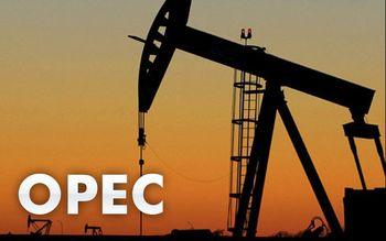 خبری که قیمت نفت را دوباره بالا برد