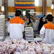 قیمت مرغ کاهش می یابد؟