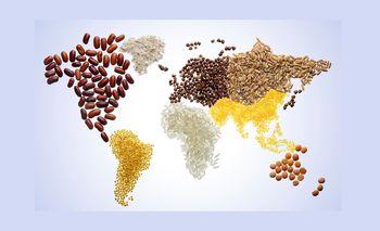 کاهش قیمت جهانی مواد غذایی / رشد قیمت برنج و گوشت برخلاف روند عمومی