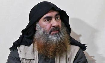 ابوبکر البغدادی کجاست؟