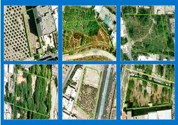 تغییر کاربری ۱۶ هکتار زمین سبز  در پایتخت؛ باغکشی متری چند؟