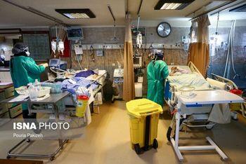 ۲۹۴ فوتی جدید کرونا و شناسایی ۱۱۵۶۱ بیمار دیگر