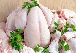 قیمت مرغ همچنان در کانال ۱۶ هزارتومانی است