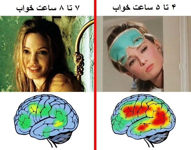 تأثیر وقایع روزانه روی <strong>مغز</strong> انسان