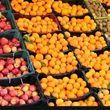 استقبال مردم از میوههای تنظیم بازاری سرد بود/ ما منتظر تغییر قیمتها و اعلام نرخهای جدید تنظیم بازاری هستیم