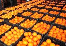 هشدار در مورد پرتقال های خونی فعلی بازار / رنگ آمیزی با گاز