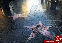 حذف ستاره ترامپ در خیابان مشاهیر هالیوود +عکس