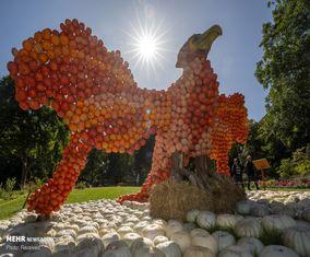 تصاویر جالب از «جشنواره کدو تنبل» در آلمان
